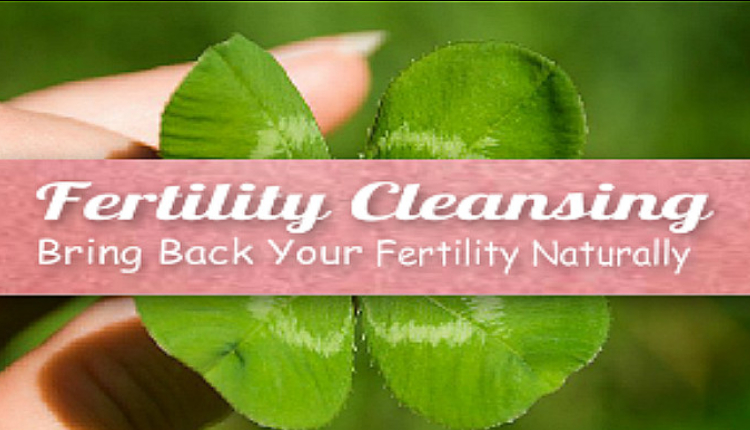 Fertilitea Detox, how to do a fertility cleanse